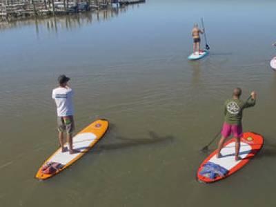 Folly beach Paddleboard