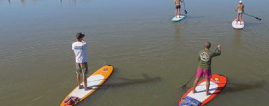 Stand Up Paddle Board Charleston SC